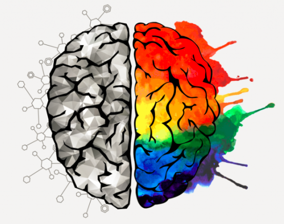 brain-1024x438
